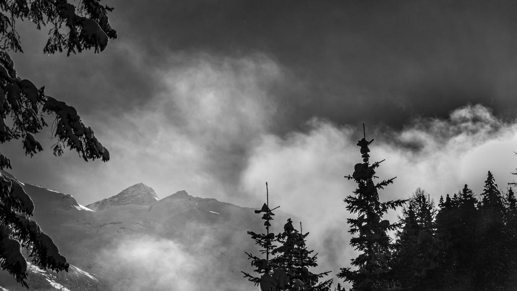 BW Winter 003 #bwseries #winter #photography #bymoalach #photooftheday #naturephotography #mountains #bealpha