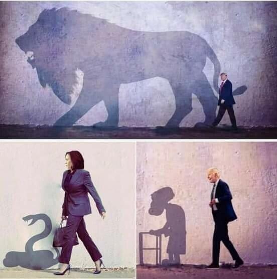 أحياناً إنعكاسات الأشياء تُظهر ما يخفيه واقع مزيف .. 😏