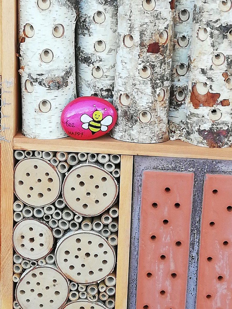 A new guest in the bug hotel 🙂 @BromsFutures #beehappy #pebblehunt