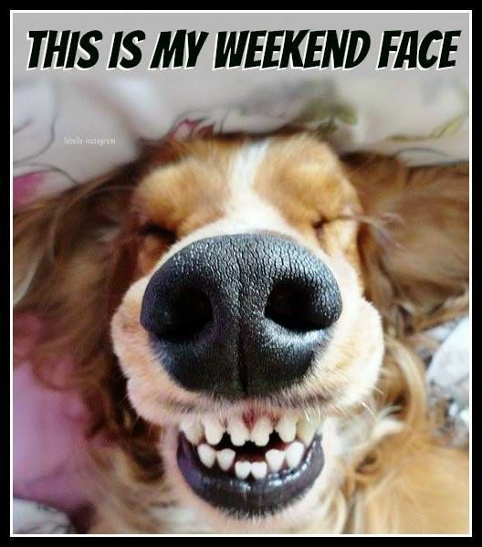 This is our #weekend face.. How's your mood like this Saturday!  #SaturdayExpress #Mood #Picoftheday #Nofilter #Nofilterneeded #Welcomesunday #ITsolutions #ITServices #Hotelmanagementsoftware #Digital #Followback #Like4like #TheWeekend #TheWeekendVibe #Website #Webdevelopment