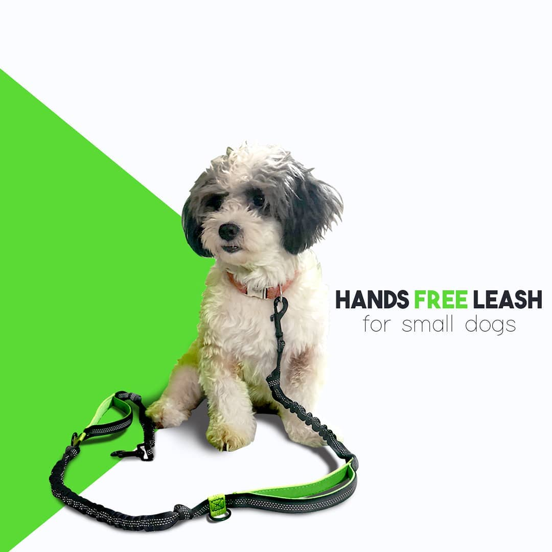 Sometimes, you will need a little extra control; we have you covered with an ergonomically designed handle.     #dogs #dogsofinstagram #dog #dogstagram #puppy #instadog #doglover #dogoftheday #doglovers #pets #doglife #love #puppylove