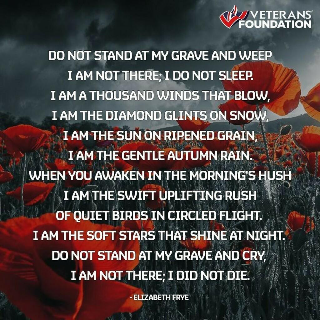 We will remember them 🌺             #lestweforget #lestweforget🌺 #lestweforget🌹 #remembrance #remembranceday #inremembrance #loss #love #memorial #memories
