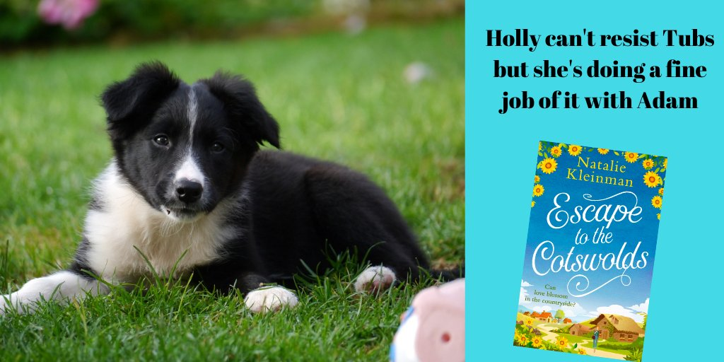It's definitely a 'curling up with a book' day  It's a big step moving from London to a country village. But Holly's determined to make a new start.  A talented artist, a vet and an irresistible puppy. What's not to love?
