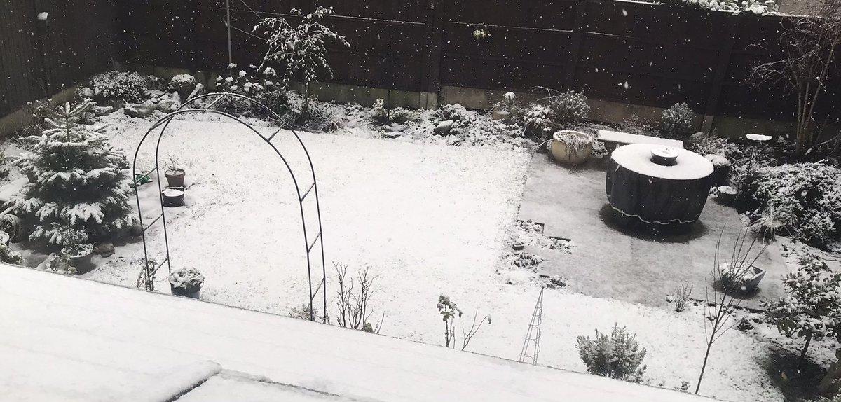 It snowed, it's snowing! I love snow. #goodmorning everyone #SaturdayThoughts #snowfall ❄️ ❄️ ❄️