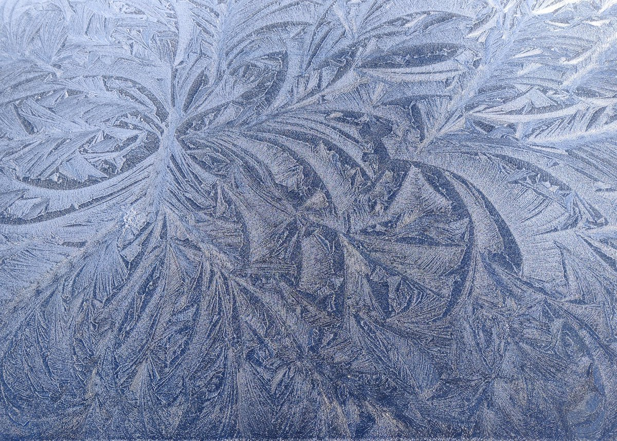 Another frosty morning walk...love them!  #twittereps #frost #SaturdayMorning