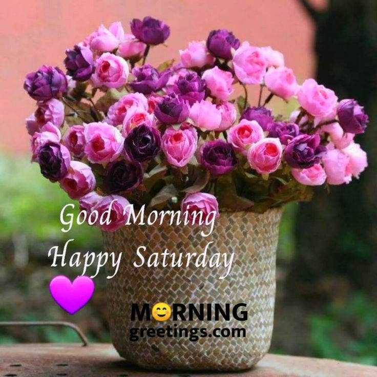 Have a lovely Saturday. Hope it's filled with happy moments. ☕💐🕊✨ #SaturdayThoughts