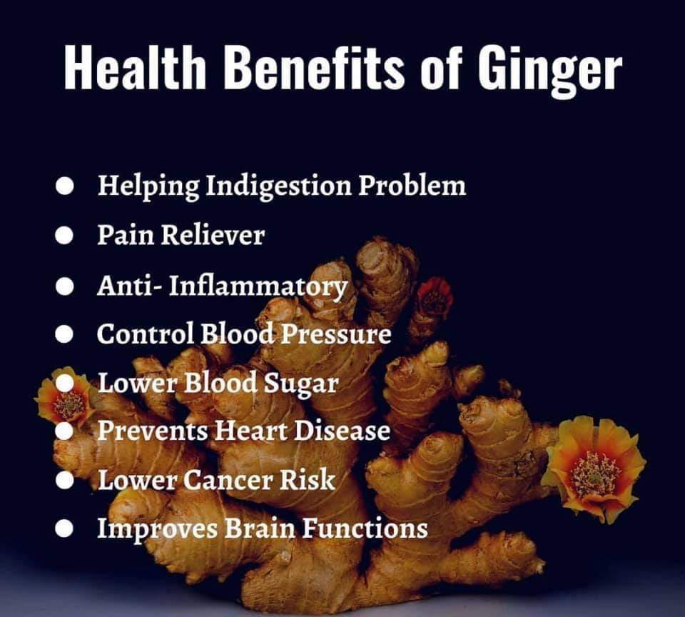 Health benefits of ginger  . .  . . #ginger #detoxwater #smartwater #metabolism #gingerbenefits #healthbenefits #ginger #gingerlife #gingerpower #gingerbread #veganhealth #wholefoodplantbased #gingertea #lemontea #lemonade #gingerbreadcookies #gingerjuice