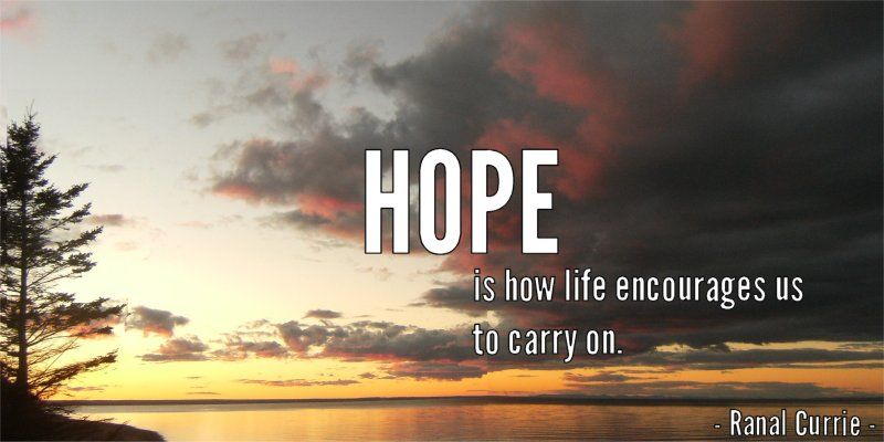Hope is how life encourages us to carry on.  #quote #life #encouragement #SaturdaySunshine