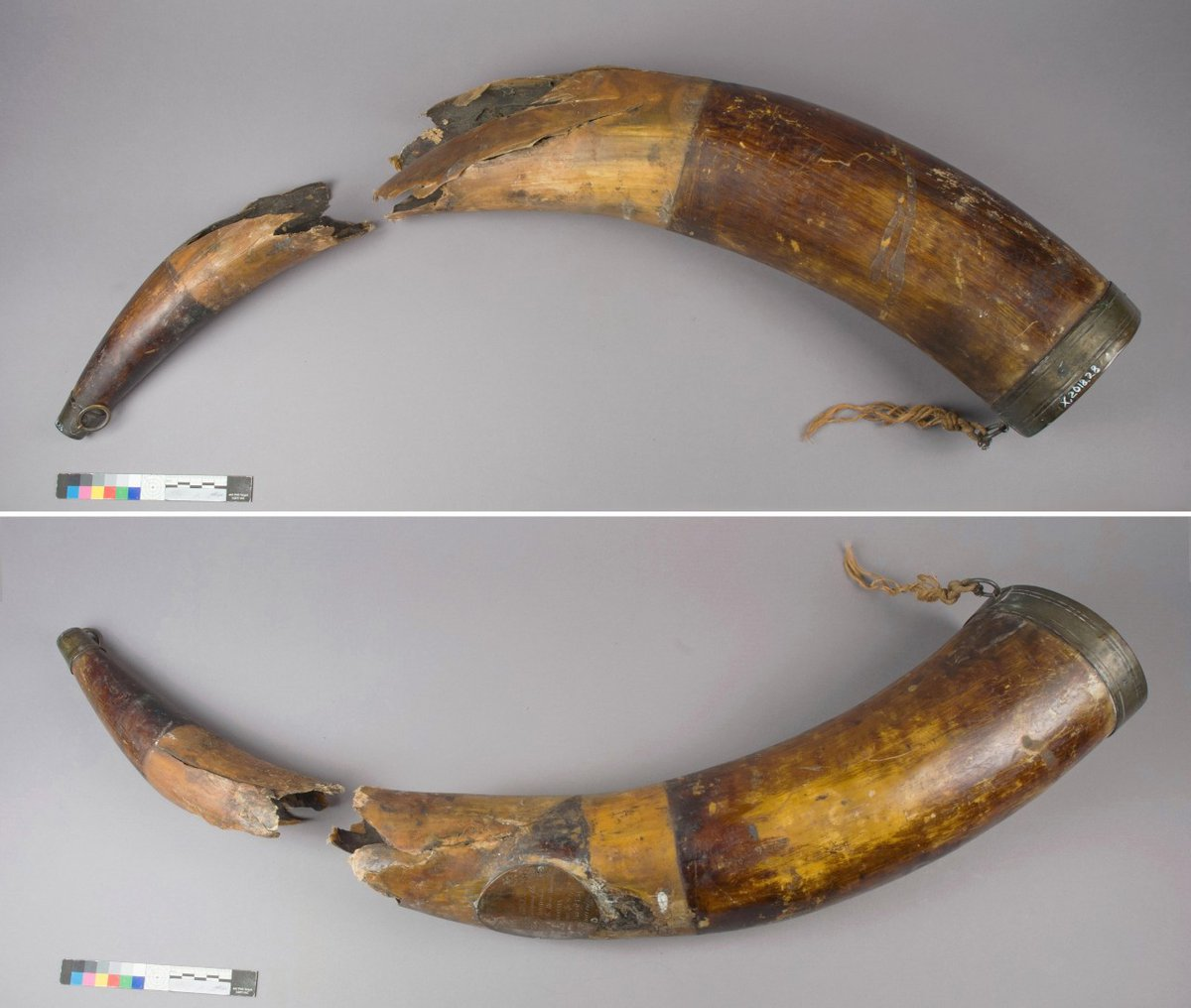 test Twitter Media - On the blog: conservator Lydia Messerschmidt documents the conservation of a military bugle horn  In part 1 of this 2-part blog she assesses the damage and what its condition tells us about its history.   👌 Includes some very satisfying time lapses   https://t.co/3v6pXq4jev https://t.co/BpoSNfPtbR