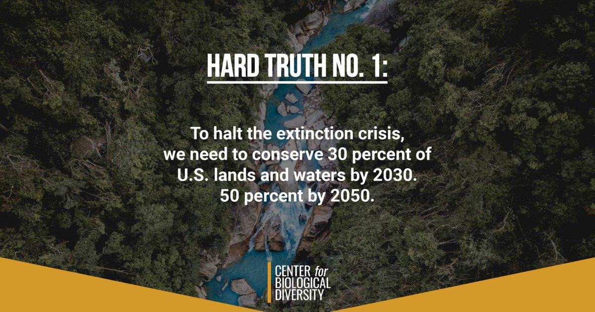 As President Biden settles into office, we're offering 50 hard truths about what's at stake for wildlife, our planet and us.   #ActBoldlyBiden