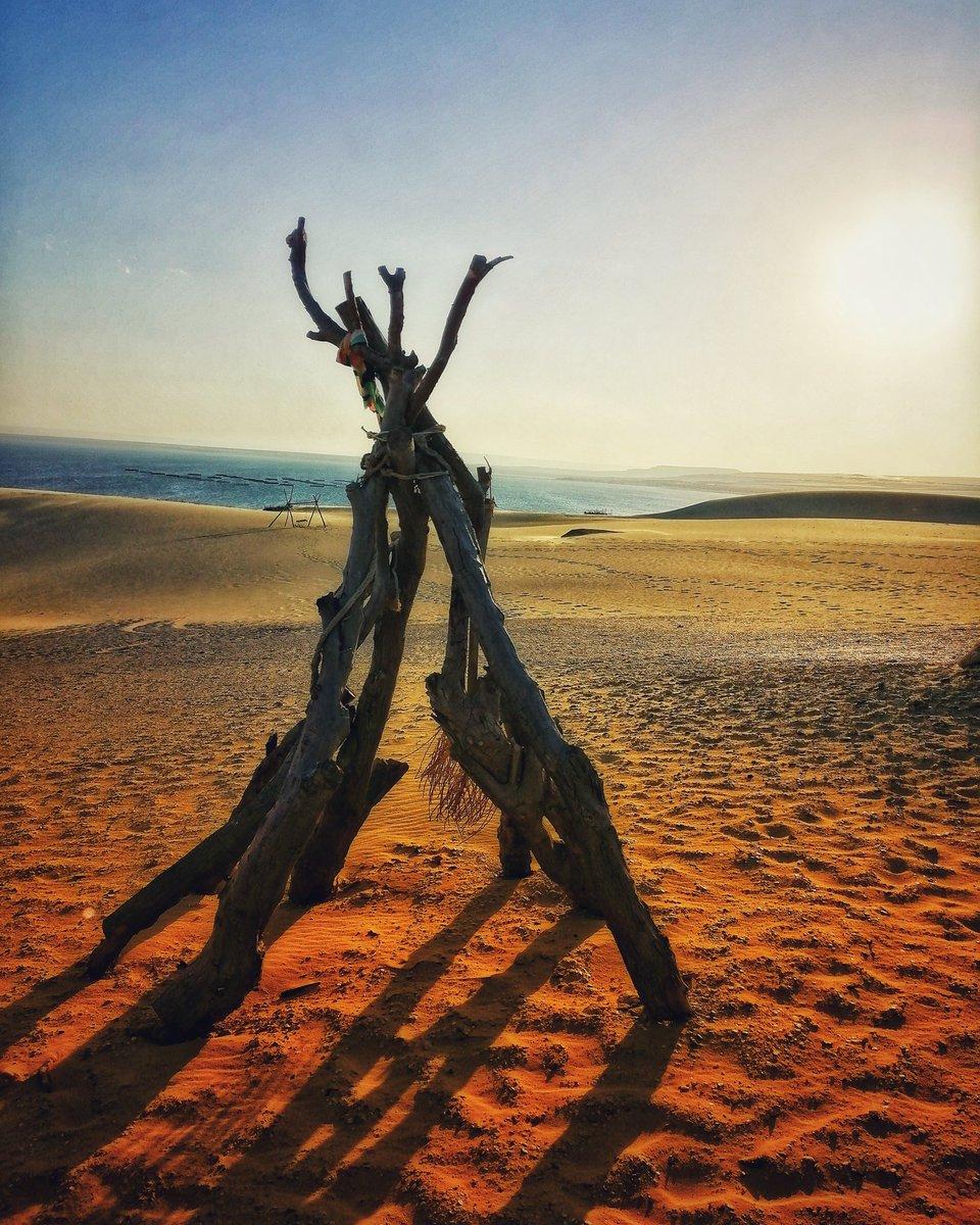 """Of all the paths you take in life, make sure some of them are sandy.""  #desert  #desertlife  #desertlife  #desertsafari  #travel  #nature  #exploremore  #explore  #travelphotography  #me  #followme  #followforfollowback  #follow4followback  #follow4like"