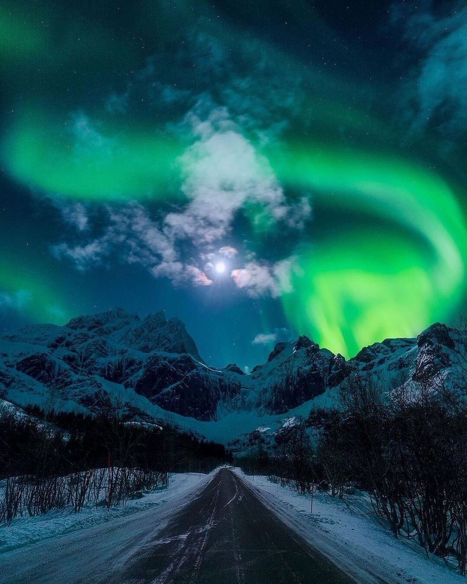Roadtrip in Lofoten ✨North Norway Tag someone you want to see the aurora with! 📸 @neilbennett3 #SweetNightBestOST  #レッドアイズ #SVT_IN_COMPLETE #nhkらじらー #SaturdayMorning #SaturdayThoughts #FACup #LarryKing #بجلی_کے_بل_جلاؤ #OnlineExam_IsOurRight #OnlineExamOrWeProtest