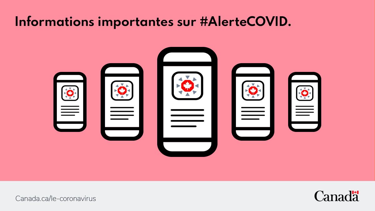 📱Pour vous assurer que les contrôles d'exposition fonctionnent comme il faut dans votre appli #AlerteCOVID, regardez l'historique des expositions dans les paramètres ⚙️ de votre téléphone. Pour savoir comment faire : https://t.co/1yUvXm8isH  #COVID19 https://t.co/EKhtl77lnp