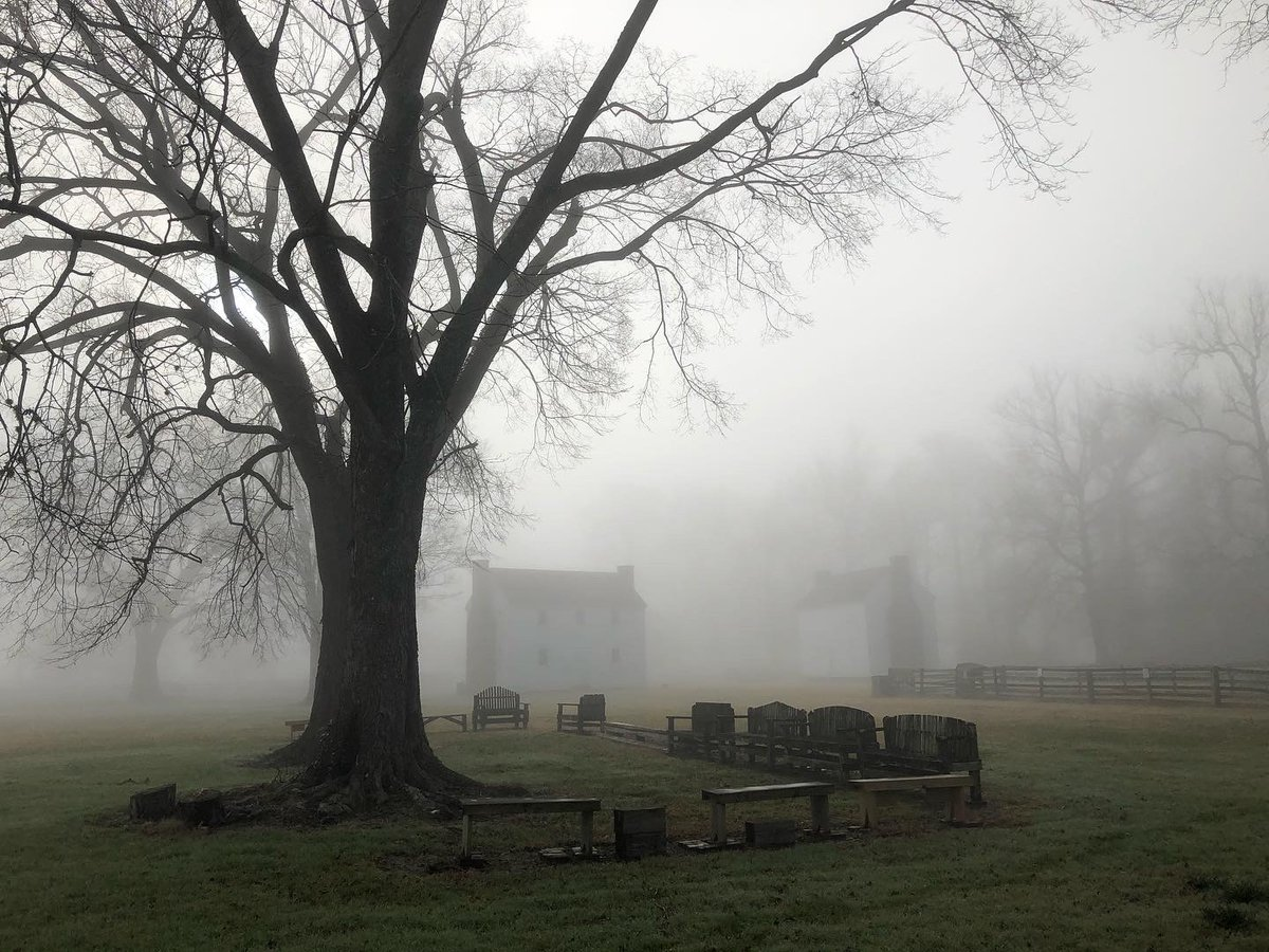Last week we had two rare foggy mornings at the site, which shrouded the landscape in a beautiful yet eerie glow.  #Fog #Photography #SaturdayThoughts