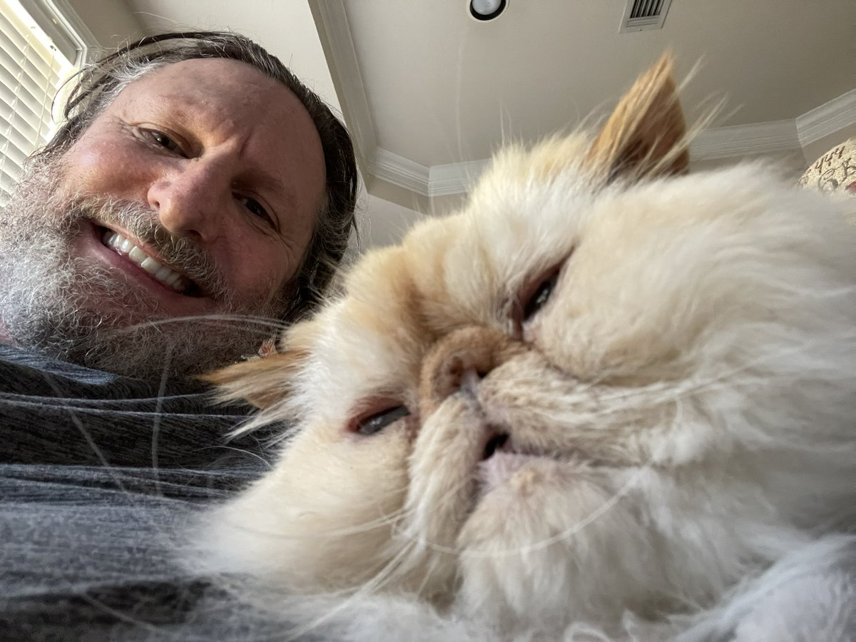 @thechrisbarron Happy #Caturday from the artist formerly banned from this platform to all the pussy grabbing followers of the frontman for the rotating physicians. Love from The Prof and Hermès the Gentleman.