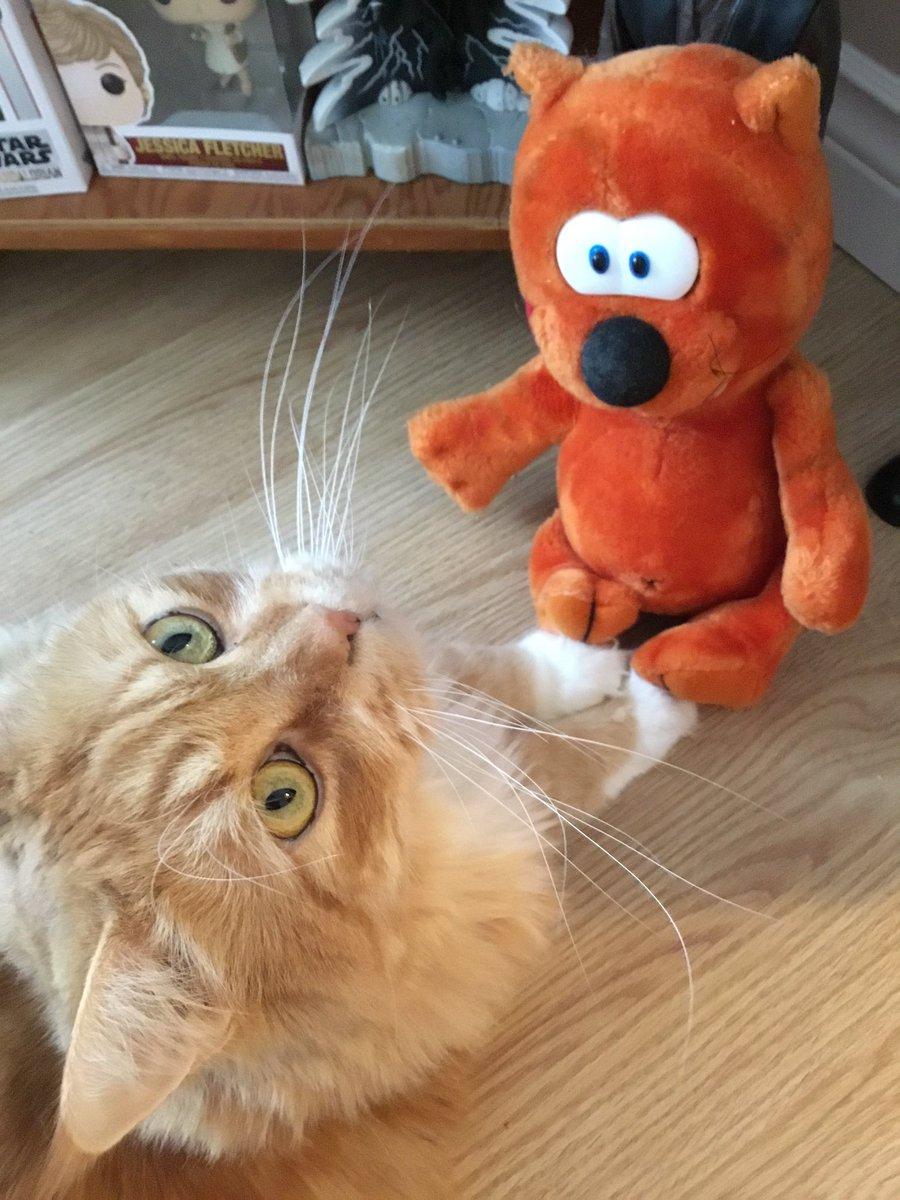 Heathcliff and Rex! 😻 #Caturday #vintage