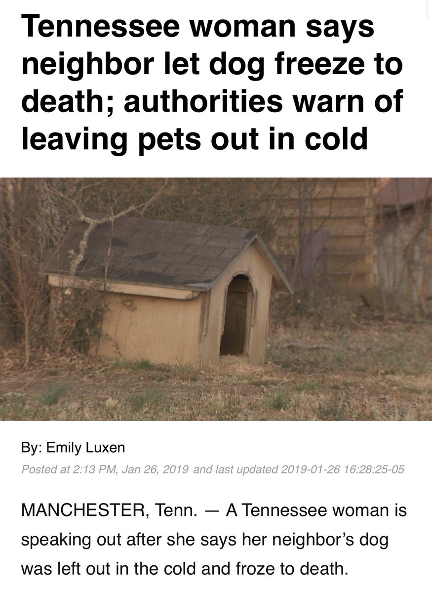 As freezing temperatures happen this is a reminder to KEEP YOUR PETS INSIDE. If you see a anyone leaving a dog outside please do something. Call ACC. If they don't respond then offer the owner ways to save the dog.These sickening deaths are 100% preventable. #betheirvoice RT!