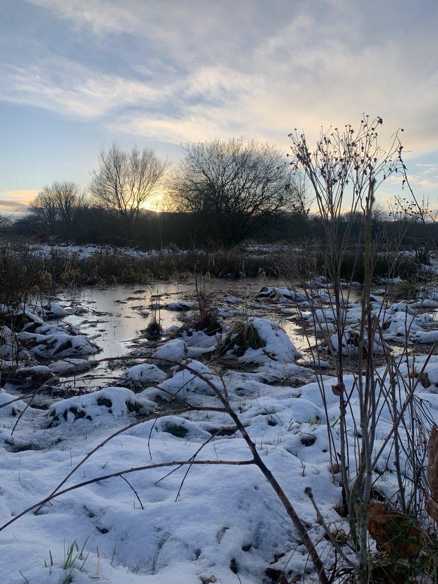 Sunlight Sonata #snowandice #winterwonder #sunlight #snow #ice #sonata #winter #wonder