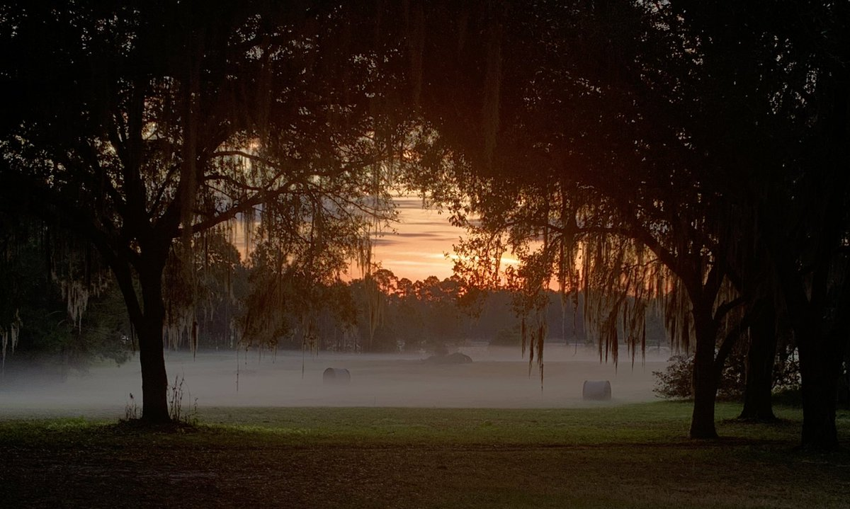 #sunset #outdoor #Florida #photography #picoftheday #beautiful #beauty #2021goals  #SaturdayMotivation #SaturdayVibes