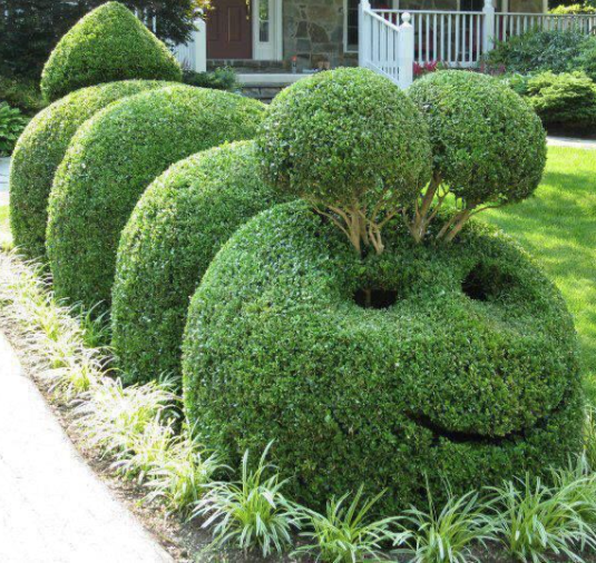 #TrumpsNoteToBidenSaid Joe, Rudy & I are going into landscaping together  mostly topiary work like below.  Melania & Ivanka are being replaced with younger and more technology-savvy versions (Grab 'em in their IPhones, am I right Joey?).  Call me!  Gotta go! Tanning at 5! Donnie