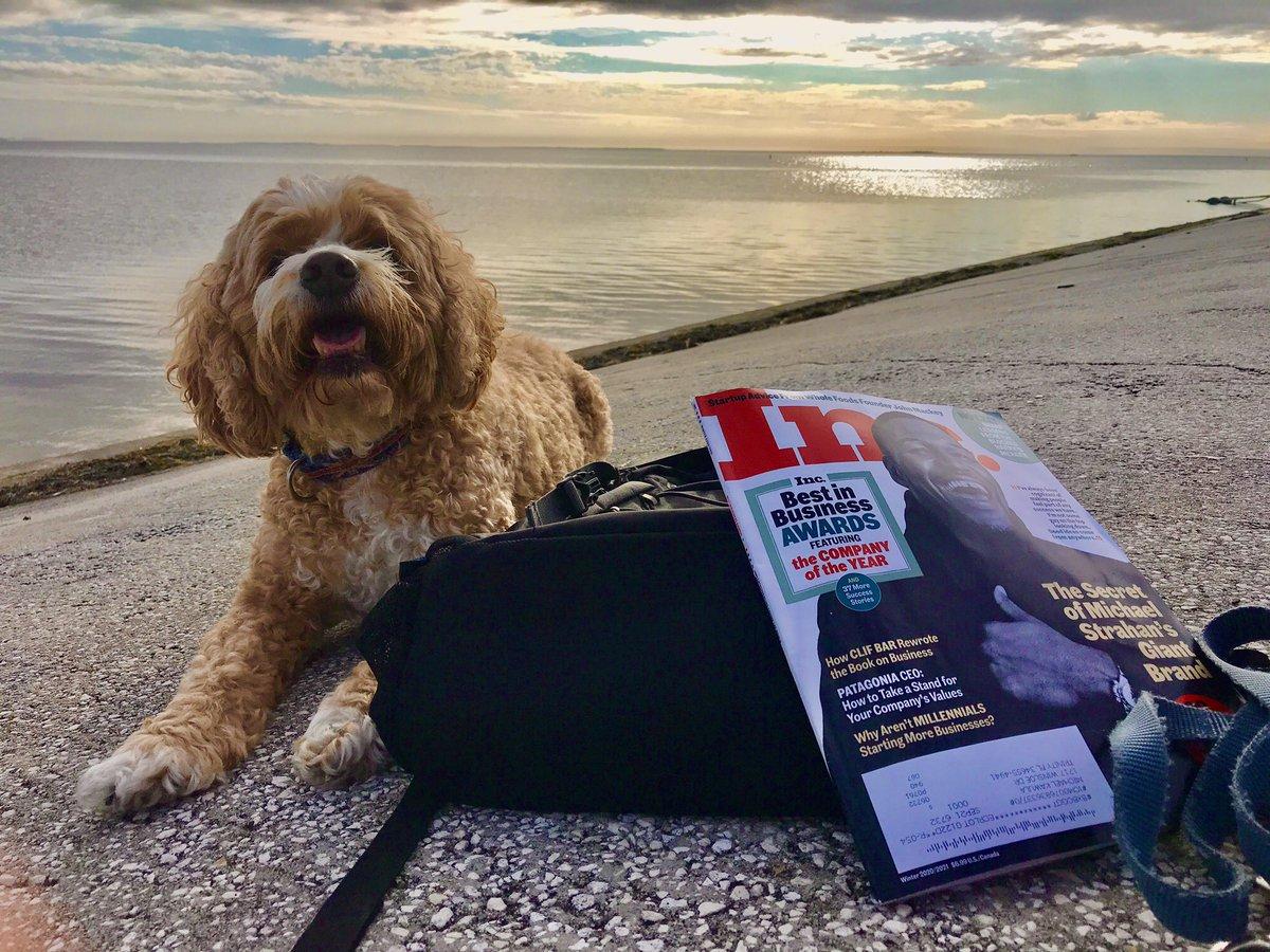 Pups, beach & Inc Magazine   Happiness ❤️🐾  #sunset #goodvibes