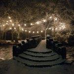 Image for the Tweet beginning: Winter wonderland. #sneachta #galway #WildAtlanticWay