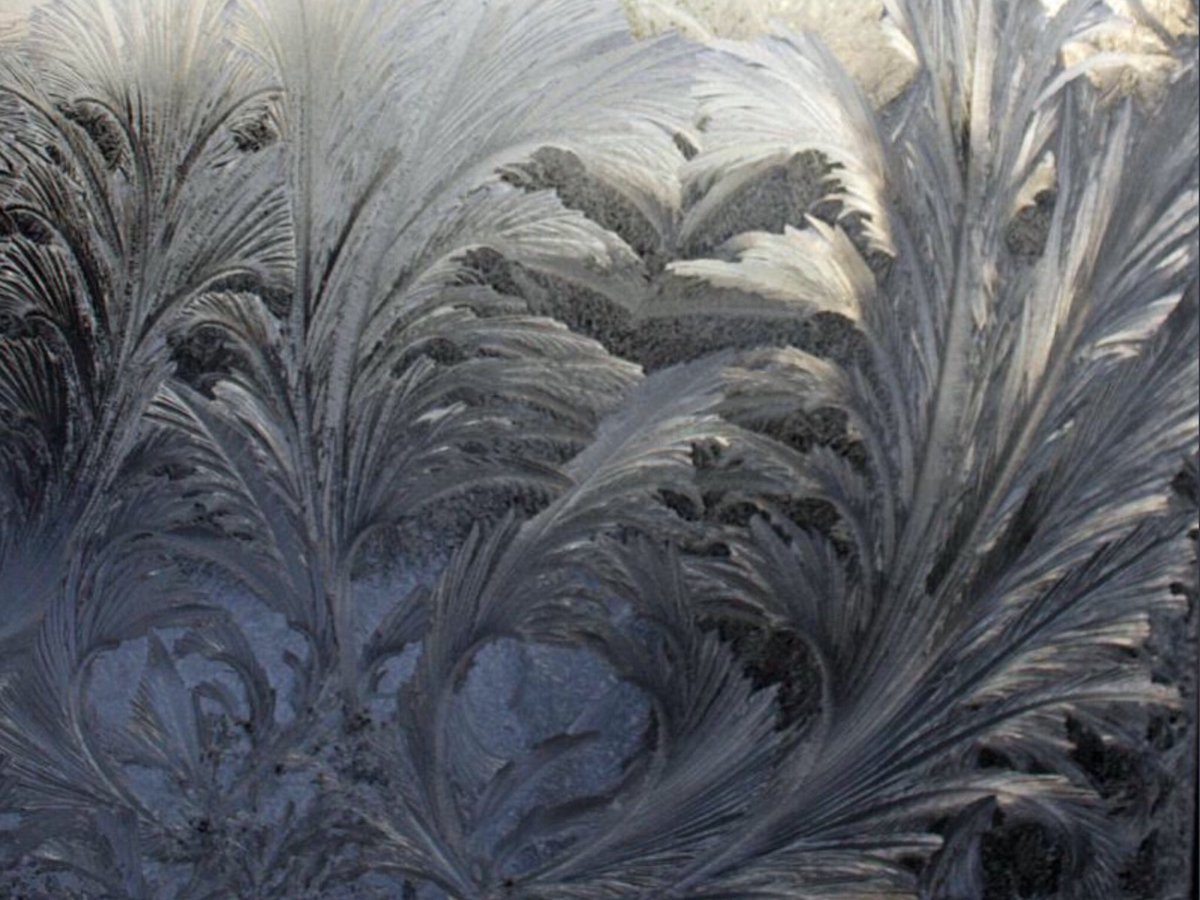 Who remembers these patterns on the inside of your bedroom window during Winter?