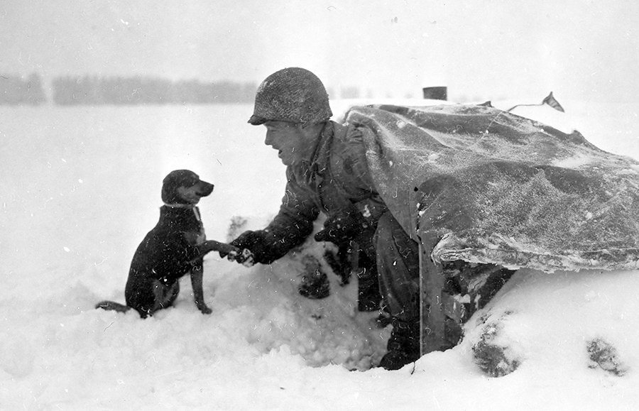 A soldier of the US 535th Anti-Aircraft Artillery Battalion with a pup on the Ardennes front, Belgium, January 1945. #WW2 https://t.co/LAHVBU4ZZs
