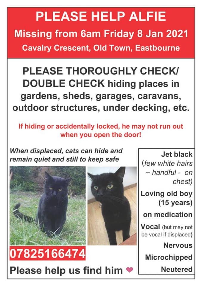 Please RT for #Alfie especially if you are in the #OldTown area of #Eastbourne. He is #missing from #CavalryCrescent & has been since 8/1/21. He is an elderly #blackcat & needs his meds. Chipped. Contact details on poster.  #Caturday #cats #CatsOfTwitter