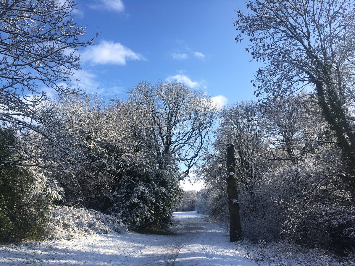 RT @fellsandfungi: Kindness is like snow, it beautifies everything it covers ~ Kahlil Gibran #uksnow https://t.co/ZPLqcDgyu8