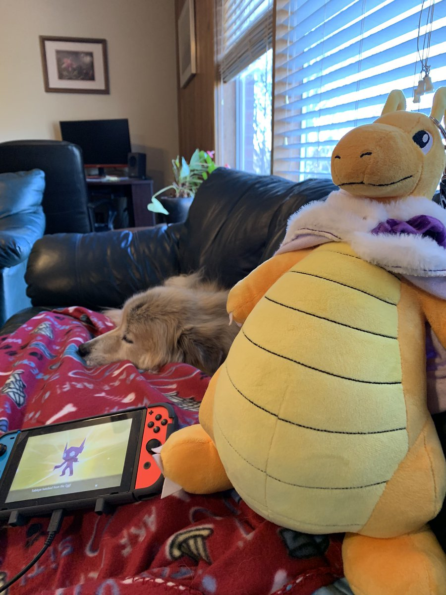 Yo, #ratemysetup. Got my weighted blanket, anti-dog floof blanket, sleepy doggo, and @buildabear #Dragonite with that shiny charm keychain. Perfect #SaturdayVibes