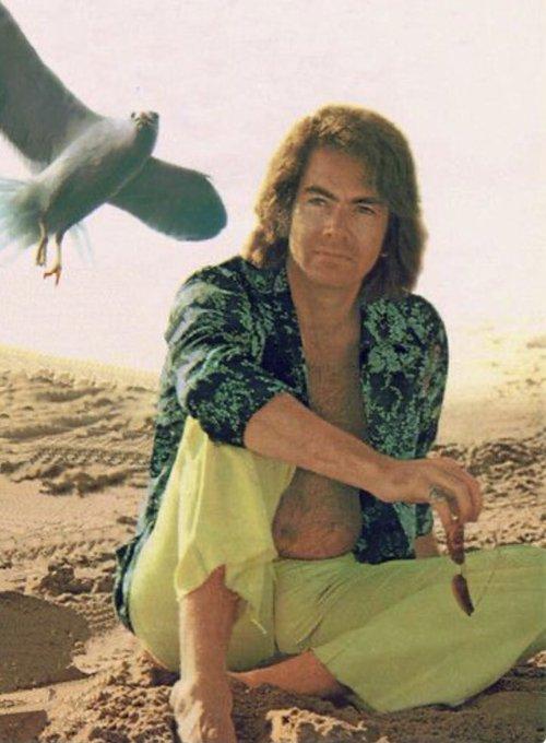 Happy Birthday, Neil Diamond (1941.1.24-)  Skybird
