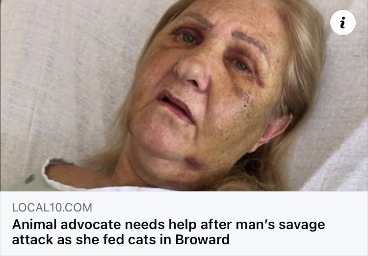 My sister first told me about this horrific incident in S. Florida near my brother in law's Fire Dept - about this #Cat loving woman who was beaten and robbed  while feeding stray cats. 🐈🐈🐈 A go fund me account has been set up for this #Animal - #Advocate who is hospitalized.