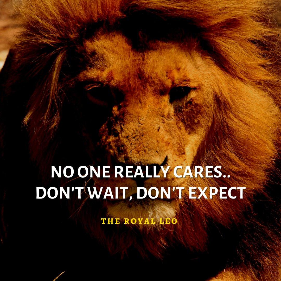 No one.. #Leo #Lion #Lions #LeoFacts #LionQuotes #LeoZodiac #TheRoyalLeo #LeoQuotes #AttitudeQuotes #LeoAttitude #LionAttitude #LeoWoman #Motivational #Inspirational #Leos #Leo♌ #LeoGang #LeoSeason♌ #LeoLife #LeoQueen #LionKing #Lioness #LionQuotesForLife #Strength #Faith #Atti