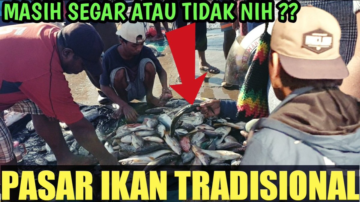 The atmosphere in the traditional fish market of the castle town of Sorong, West Papua 2021. Click the link below to watch the video;  Click here👉https: //youtu.be/s7AYh2UzKEY  #Link #Livestream #fishmarket #AmericaOrTrump #England #fish #Viral #like #Singapore