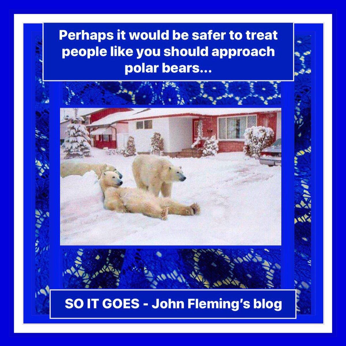 """Perhaps it would be safer to treat people like you should approach polar bears…""   #thejohnfleming #blog  #kenya #africa #eastafrica #nairobi #mombasa #django #kolkata #mumbai #pune #juba #tamil #johannesburg #bloemfontein #soweto #pietermaritzburg #nyc"