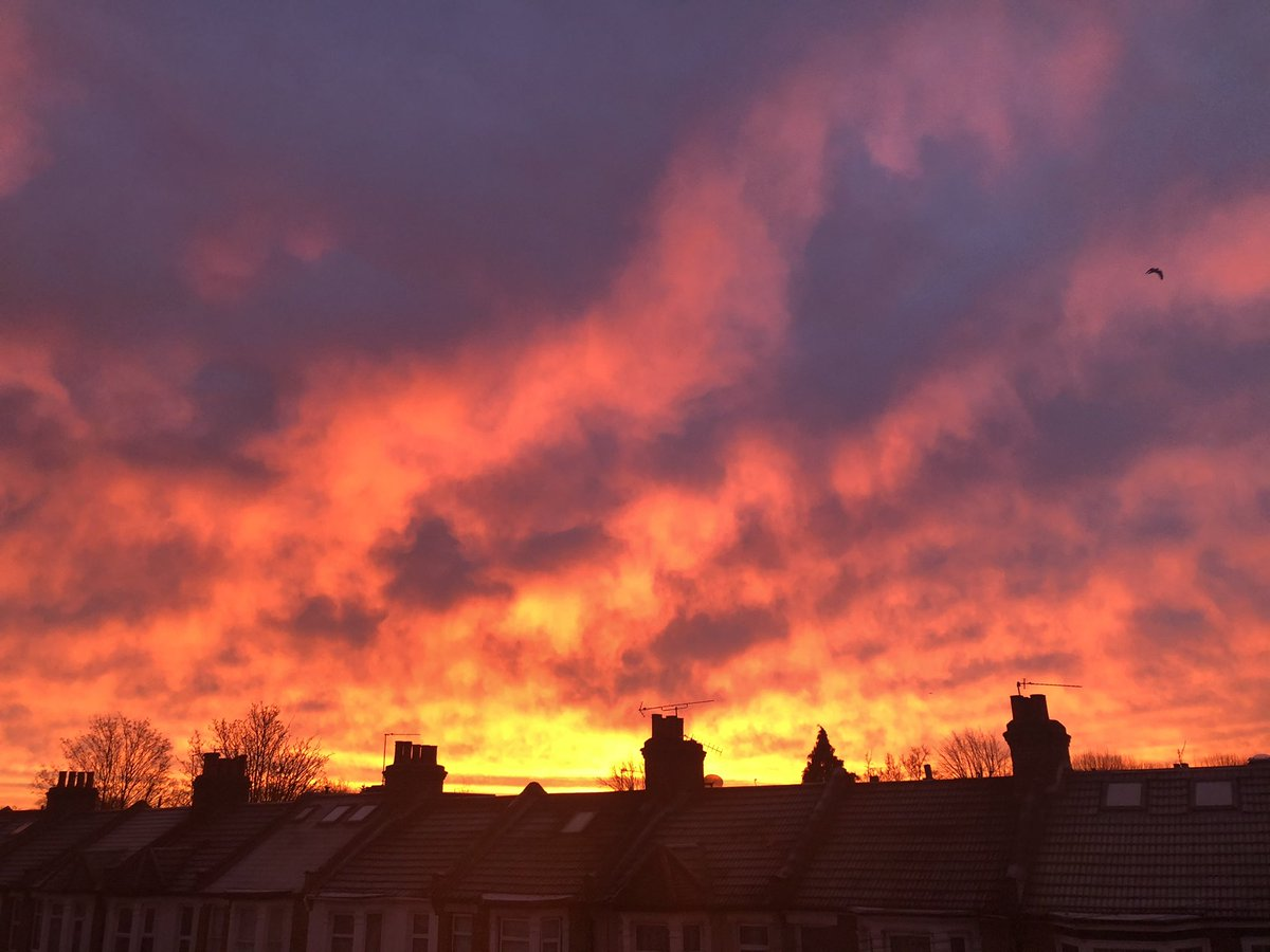What a beautiful sunrise I was rewarded with when peeking out of the window to see if there had been any snow overnight - such stunning colours! #London #Sunrise #NoFilter