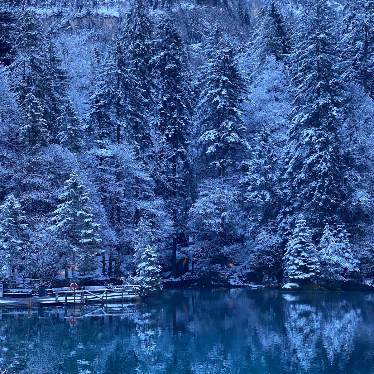 A gorgeous Sunday lies ahead of us. What are your plans for today? #visitswitzerland #blausee #happyplace #winterdays #swisswinter #naturephotography #nofilter #picoftheday #lakelove #blueisthecolour #inlovewithswitzerland #meineberge #stunning #snow #winter #travelgram #sunday