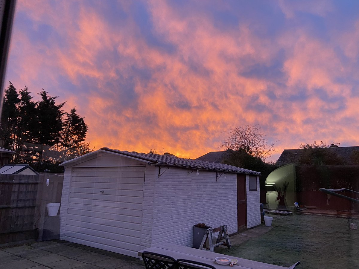 I looked outside and the sky was on fire #redskyinthemorning #winter #garden
