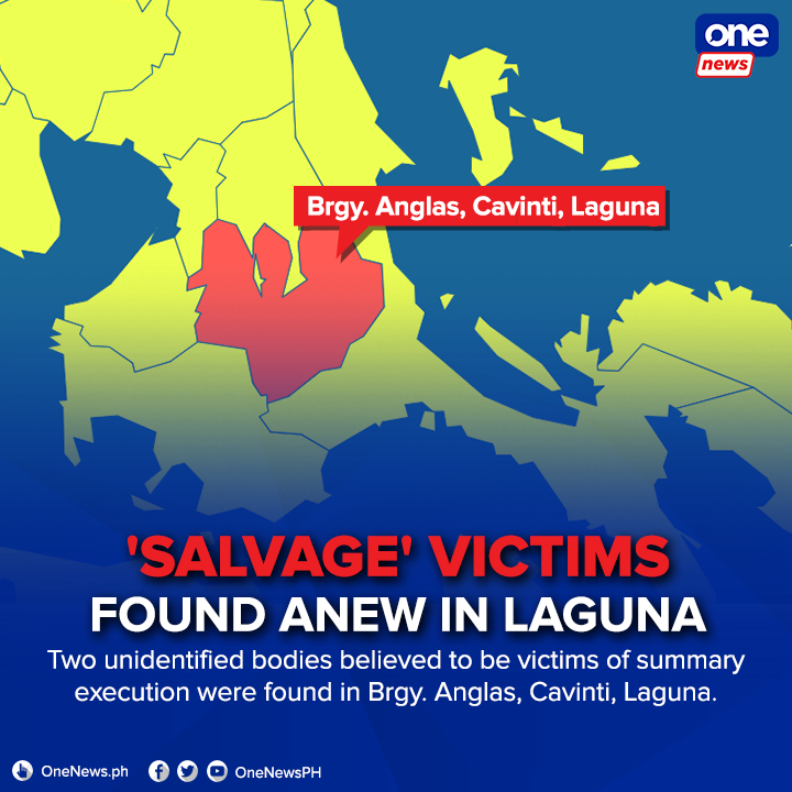 There are a total of six summary execution reported in Laguna in the past week.