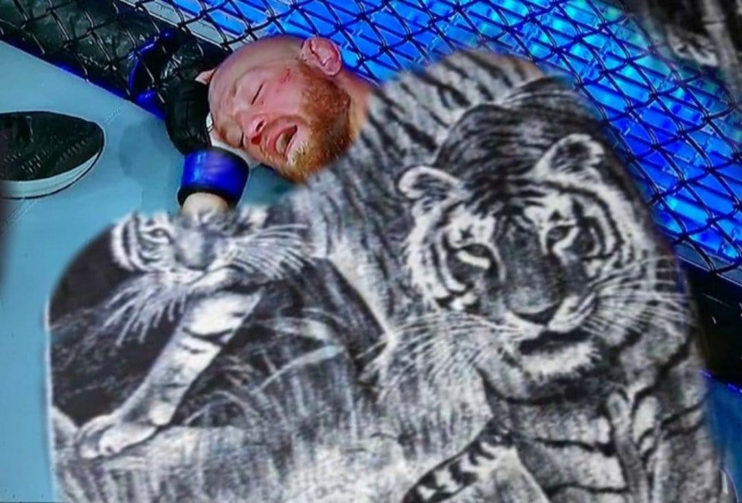 A dormir se dijo #UFCFightIsland #ufc #UFC257 #McGregorPoirier