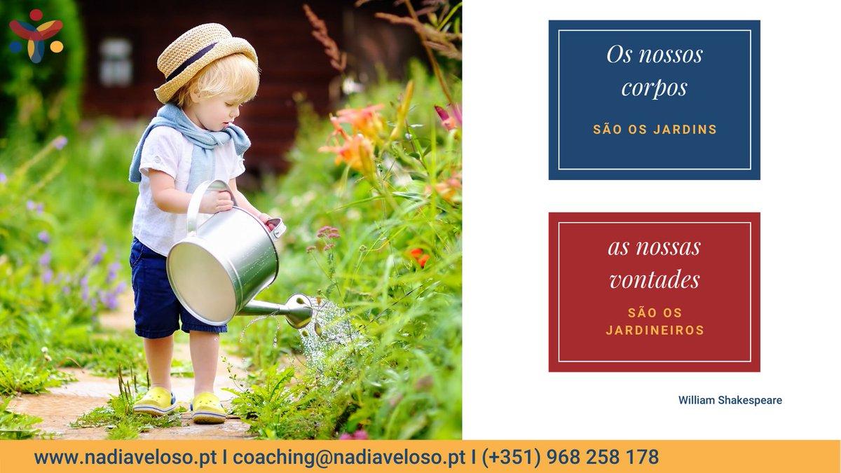 Já reparaste como um jardim fica quando não é cuidado regularmente? Crescem ervas daninhas, as flores começam a murchar e depois secar. Se não cuidarmos da nossa mente,  um dia quem nós verdadeiramente somos, já não sabemos #coaching #felicidade #lifecoaching #autoconfiança