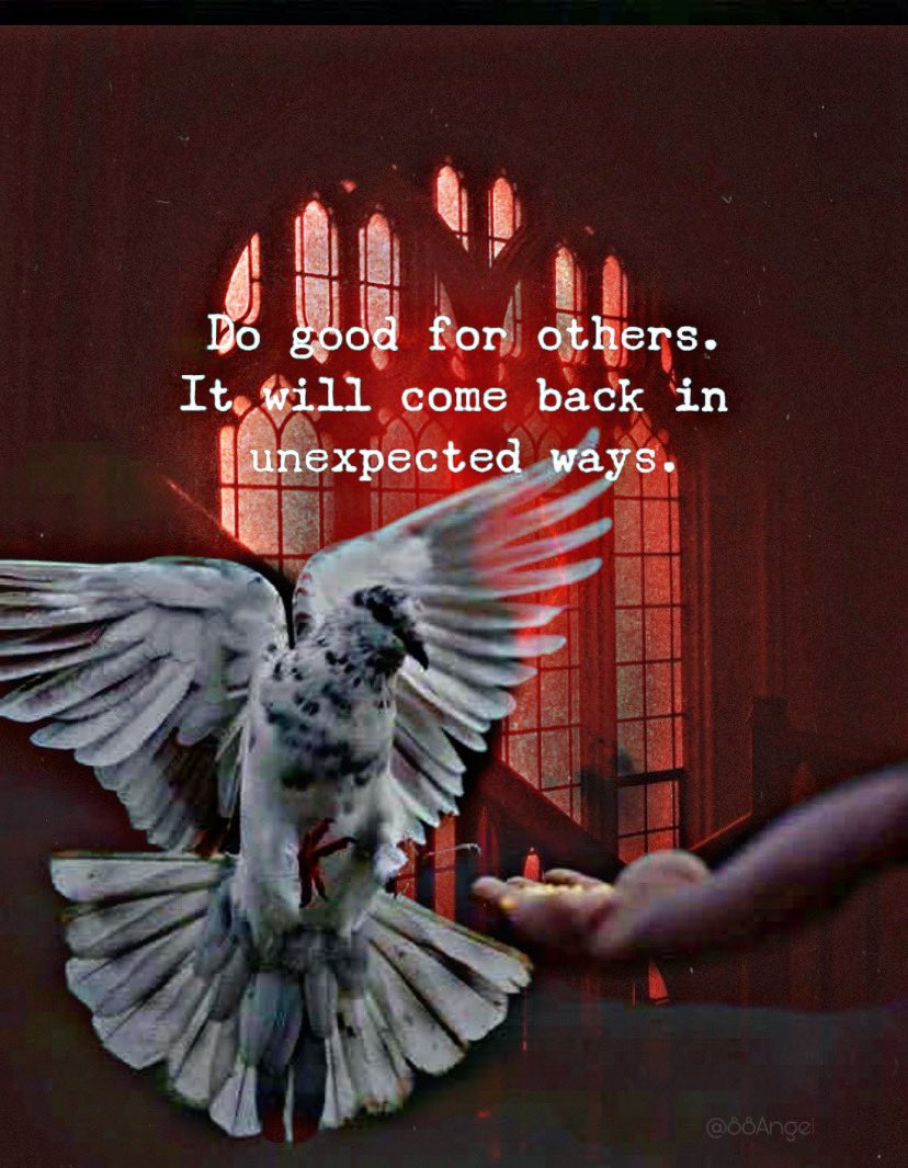 Do good for others... it'll come back in unexpected ways! #sundaymorning #sundaymotivation #SundayFunday #sundayvibes #sunday #motivation #quotes #quote #Inspiration #inspirationalquotes #inspirational