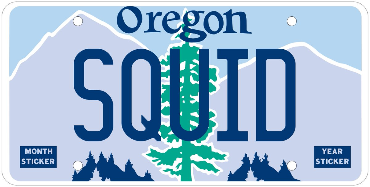 The Custom Oregon Plate SQUID was available, but is now reserved.  #Oregon #LicensePlate #VanityPlate #OregonPlates #CustomPlate #SQUID