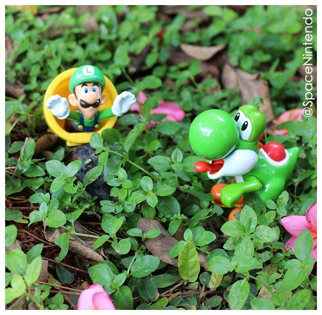 Um ótimo domingo para todos nos! 🥳  #nintendo #nintendospace #spacenintendo #sundayvibes #nintendobrasil #game #games #gamer #gamers #gaming #videogames