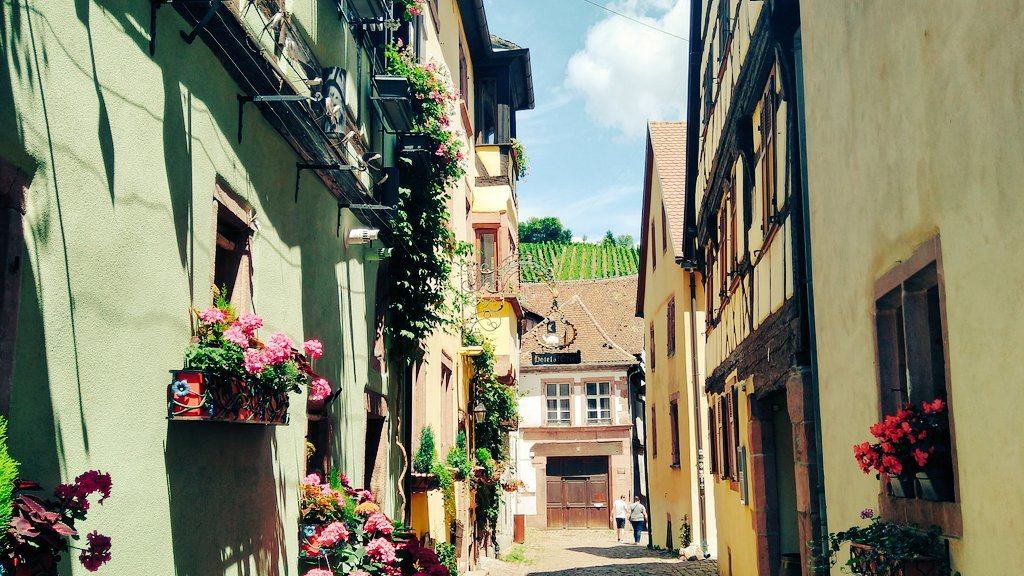 A look back at our trip in Riquewihr, France🇫🇷. Small enchanted streets to walk through and feel the magic! Vive la France. #TravelTheWorld #picoftheday   Follow us on youtube!