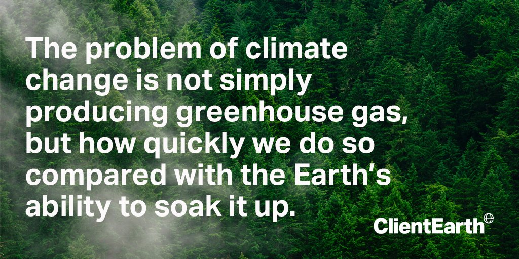 Human activity is damaging Earth's biggest #carbonsinks – forests and oceans, altering their ability to absorb excess CO2. We asked journalist @davidneiladam to investigate how carbon sinks are vital for life on Earth, and why we need to protect them: