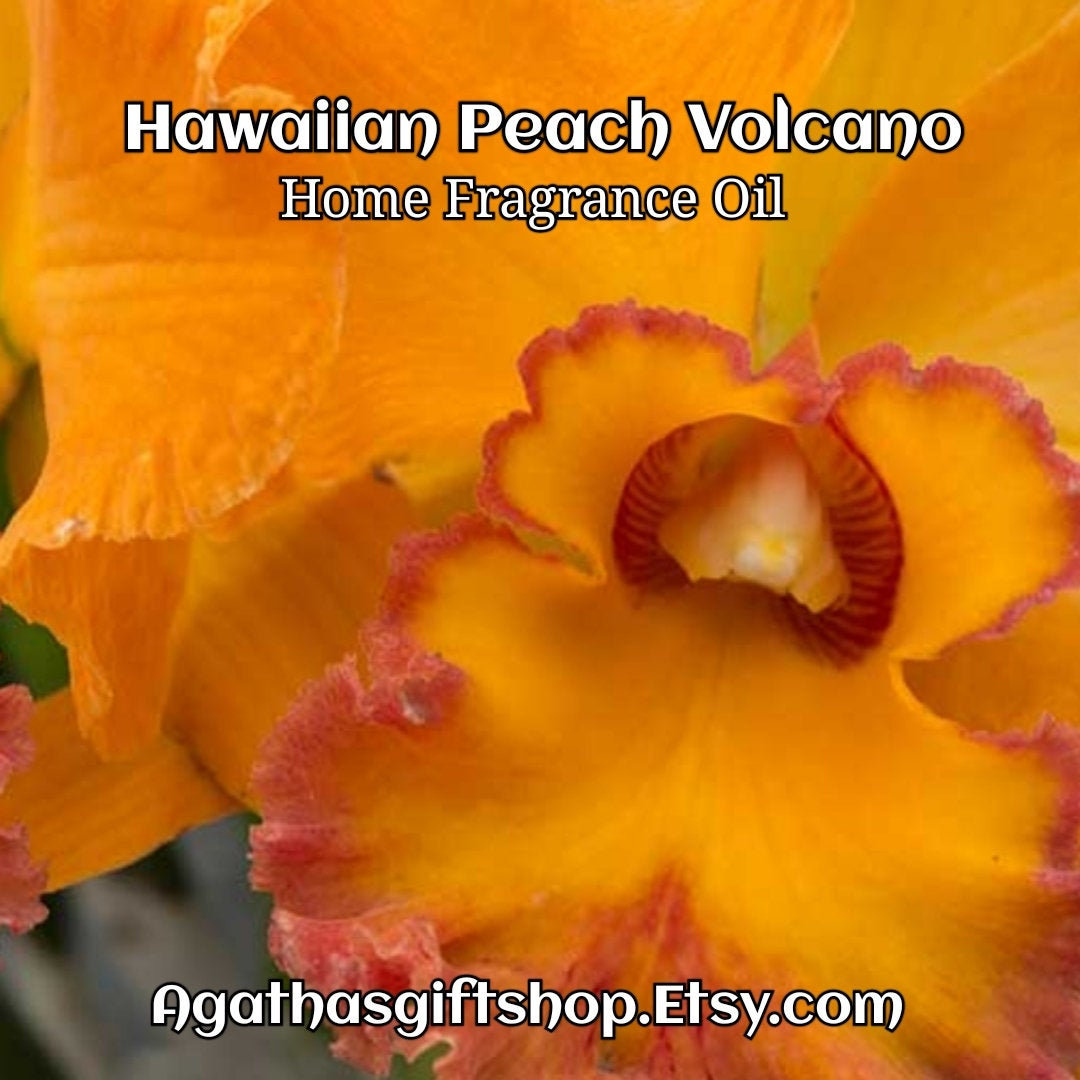 Hawaiian Peach Volcano Home Fragrance Diffuser Warmer Aromatherapy Burning Oil  #BlackFriday #Etsy #Wedding #HerbalRemedies #CyberMonday #PerfumeBodyOils #AromatherapyOil #HomeFragranceOil #Incense #GiftShopSale #Aromatheraphy