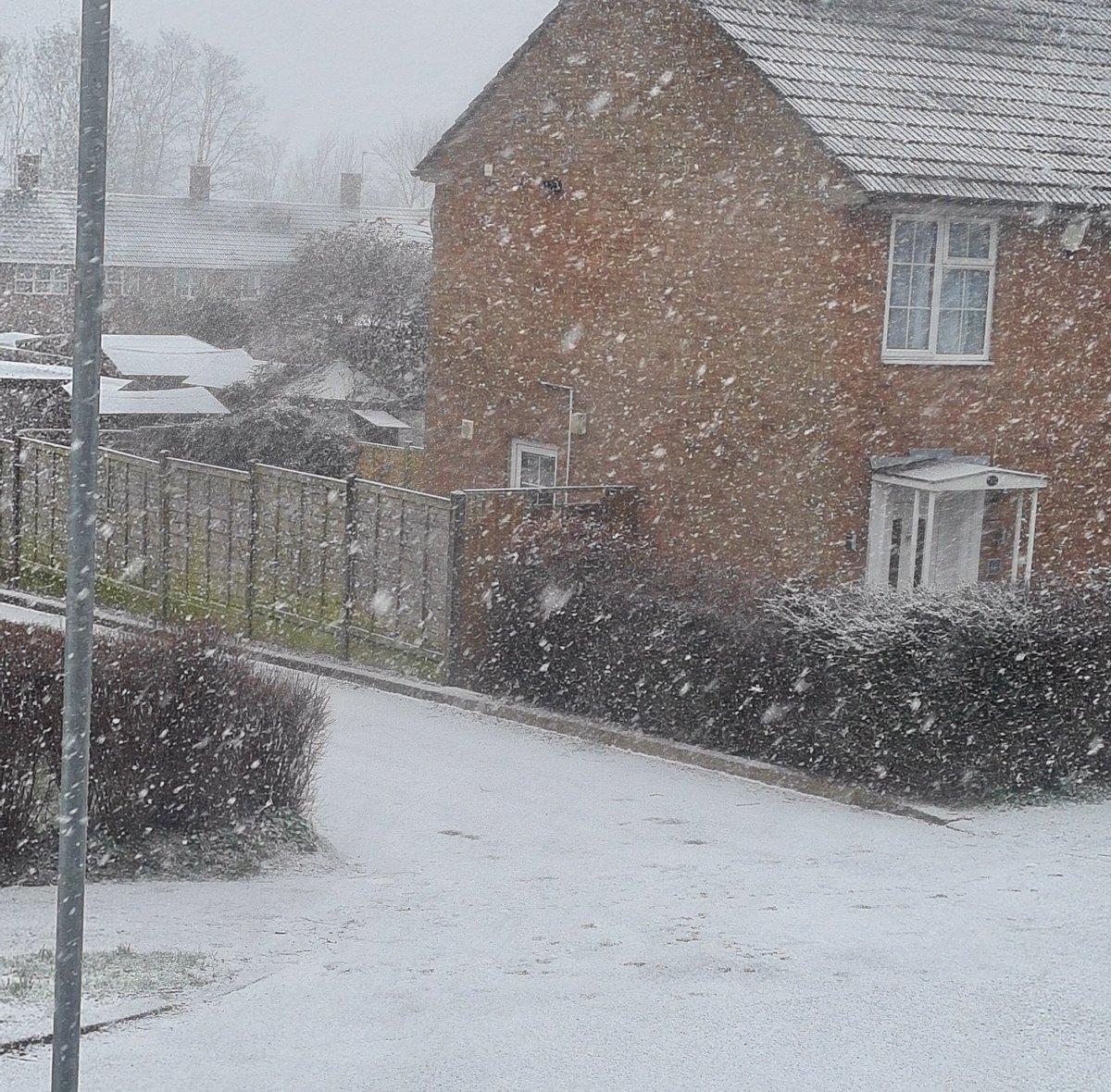 Snow day #Monday anyone?