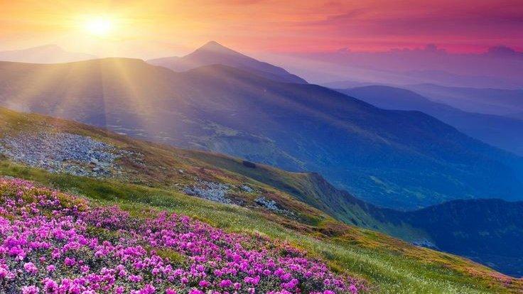 Beautiful nature, God's smile on human beings.  Thank God  #sundayvibes